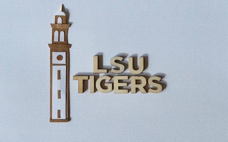 LSU Tigers Tailgating. Game Day Recipes: Purple & Gold Potato Salad By Rebecca Gordon Buttermilk Lipstick Editor-In-Chief Southern Tailgating, Cooking & Entertaining Brand Southern Tailgating Expert Sports Entertaining Pastry Chef Author Writer Tide & Tigers Today Tailgate Host WBRC Fox 6 Birmingham Alabama