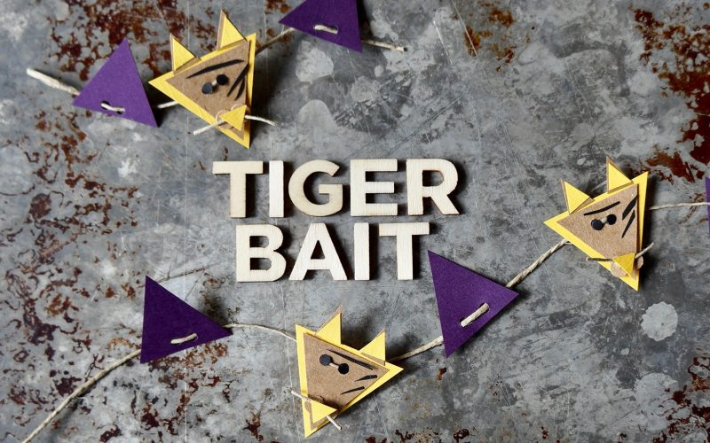 LSU Tailgating Recipes. Purple & Gold Potato Salad By Rebecca Gordon Buttermilk Lipstick Editor-in-Chief Southern Tailgating, Cooking & Lifestyle Entertaining Brand Sports Entertaining Southern Tailgating Expert Writer Pastry Chef Author Tide & Tigers Today Tailgate Host WBRC Fox 6 Birmingham Alabama
