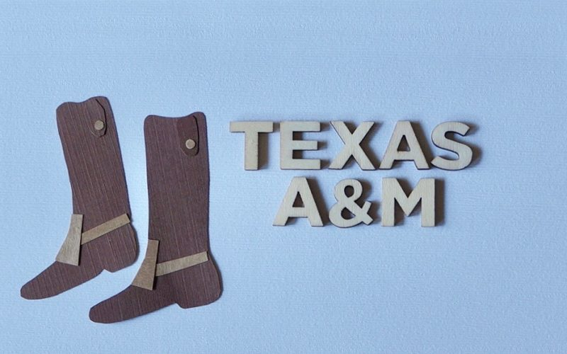Aggieland Tailgating. Reveille Pimiento Cheese Biscuits By Rebecca Gordon Buttermilk Lipstick Southern TV cooking Personality Editor-in-Chief Southern Lifestyle Tailgating, Cooking & Entertaining Brand Sports Entertaining Pastry Chef Author Writer Tide & Tigers Today Tailgate Host WBRC Fox 6 Birmingham Alabama