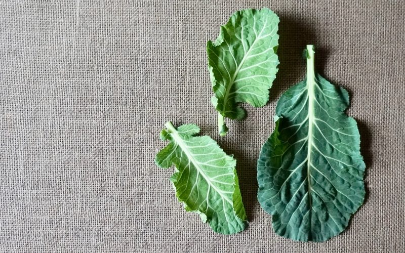Cooking Tutorials. How To Prepare Classic Collard Greens By Rebecca Gordon Editor-In-Chief Buttermilk Lipstick Culinary & Entertaining Brand Cooking & Baking Tutorials Practical Culinary Techniques For Everyday Cooks Editorial Director Digital Culinary Photo Journalist Pastry Chef Writer Food Stylist Modern Southern Socials TV Cooking Personality Game Day Entertaining