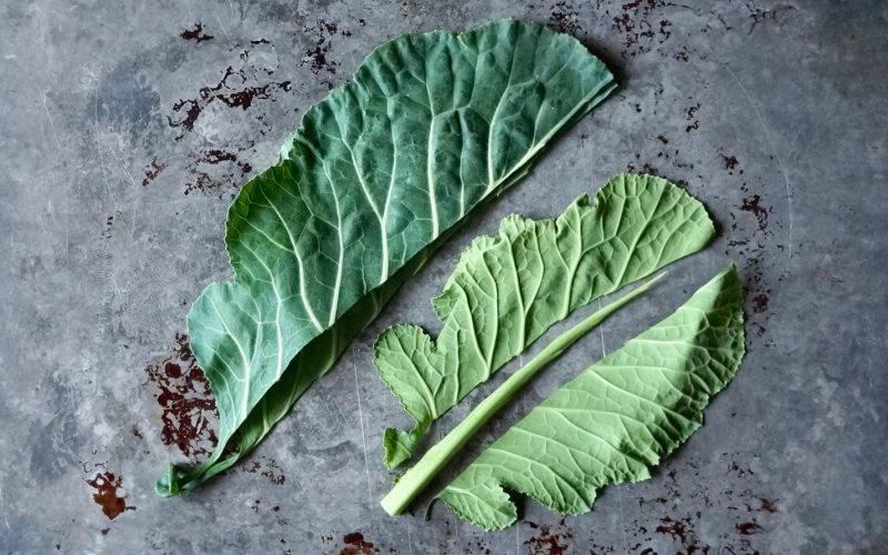 Cooking Tutorials. Collard Greens By Rebecca Gordon Editor-In-Chief Buttermilk Lipstick Culinary & Entertaining Brand Digital Culinary Photo Journalist Classic Collard Greens. Cooking & baking Tutorials Practical Culinary Techniques For Everyday Cooks. Editorials Director Digital Culinary Photo Journalist Pastry Chef Food Stylist Writer Modern Southern Socials Game Day Entertaining