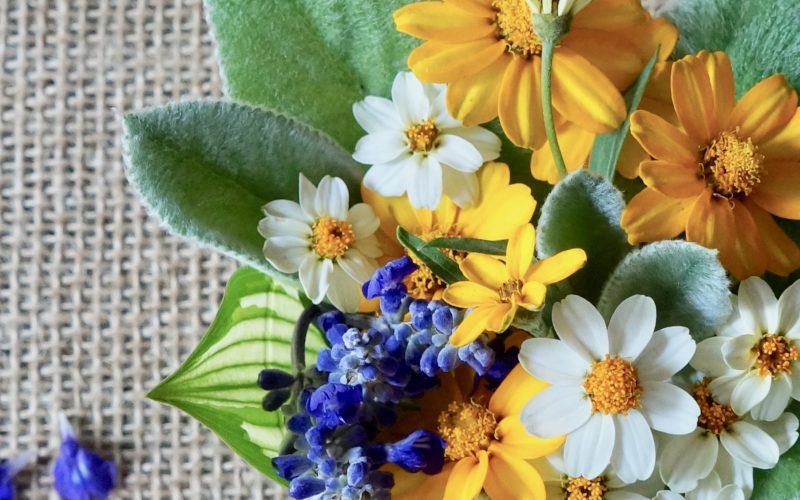 How To Grow, Care For And Create Lambs Ear Flower Arrangements. The Summer Flower Garden By Rebecca Gordon Editor In Chief Publisher Buttermilk Lipstick Culinary Entertaining Techniques Cooking Baking Tutorials Modern Southern Socials RebeccaGordon Southern Parties Pastry Chef TV Cooking Personality Birmingham Alabama Summer Entertaining Garden Flowers For Southern Summer Entertaining
