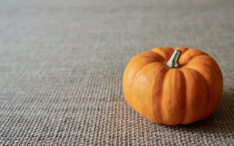 The Basics. Pumpkins By Rebecca Gordon Editor In Chief Buttermilk Lipstick Culinary Entertaining Techniques. Southern Hostess Cooking Baking Tutorials Modern Southern Socials Game Day Entertaining RebeccaGordon Pastry Chef TV Cooking Personality Birmingham Alabama