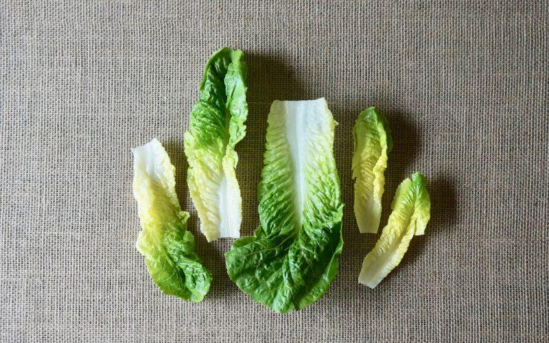 Romaine-Lettuce-Classic-Cobb-Salad-Rebecca-Gordon-Editor-In-Chief-Buttermilk-Lipstick-Culinary-Entertaining-Techniques-Southern-Entertaining-Red-Wine-Dijon-Vinaigrette-RebeccaGordon-Chef-Birmingham-Alabama