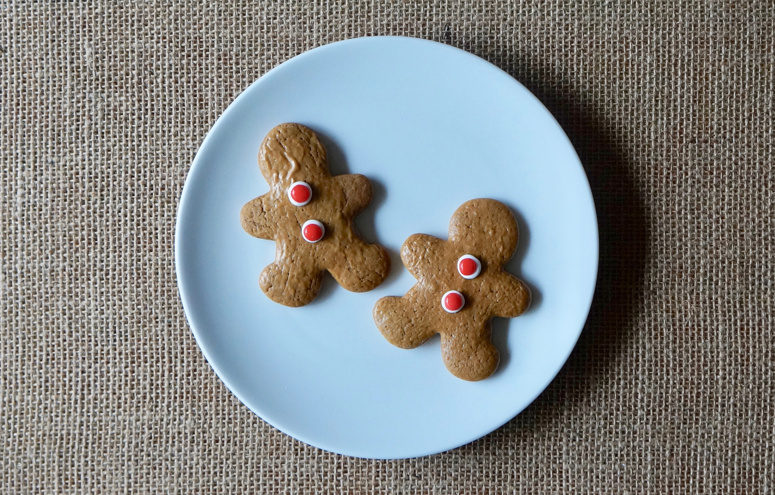 Rebecca-Gordon-Decorating-Your-Home-With-Christmas-Cookies-Buttermilk-Lipstick-Culinary-Entertaining-Techniques-Decorated-Buttermilk-Gingerbread-Cookies-Pastry-Chef-TV-Cooking-Personality-Fox 6-WBRC-Birmingham-Alabama