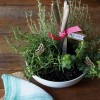 Instant Herb Garden Rebecca Gordon Buttermilk Lipstick Entertaining Party Ideas