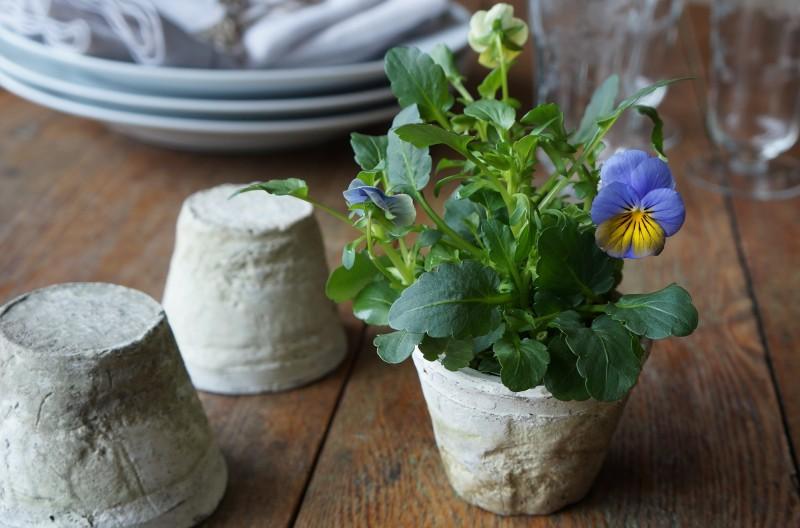 Spring Flowers Party Ideas rebecca gordon southern hostess recipes tailgating buttermilk lipstick