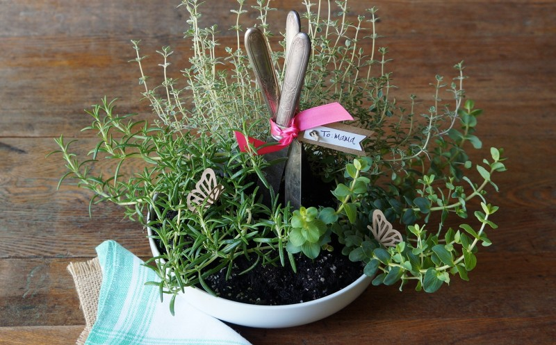 Mother's Day Gift Herb Garden Silver knives rebecca gordon buttermilk lipstick southern recipes entertaining ideas